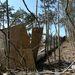 A kerítés külső oldalán a rozsdás vascső a régi kerítés maradéka, amelyről Csipak azt hitte, a telekhatár