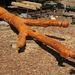 Útnak indult az a kilenc méter magas életfa, amelyet magyar és kazah kormánytagok, valamint a Magyar-Turán Alapítvány képviselőinek jelenlétében avatnak fel június 3-án Kazahsztánban