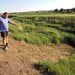 Ádám Péter mutatja, hol fogta ki a Galga-patakból az aligátorteknős, a Pest megyei Püspökhatvanban.