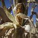 Nemcsak a talaj volt száraz, hanem a levegő is, ez is oka annak, hogy a kukoricacsöveken alig vannak szemek