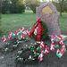 Povl Bang-Jensen első magyarországi köztéri emlékműve a Dán Királyi Nagykövetség koszorújával