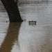 Egy tábla teteje látszik csak ki a Kerka áradása miatt víz alatt álló területen a Zala megyei Kerkaszentkirályon