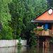 Délelőtt Nagymarosnál. A történelmi rekordot meghaladó áradást várnak a Dunakanyarban is.