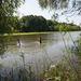 Gyerekek fürdenek a nyárias időben a Tisza emelkedő szintje miatt újra elöntött ártéren Szolnokon