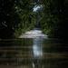 Szentendre egyes részei és a Pap-sziget házai azonban víz alá kerültek