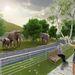 Látványtervek az új elefántkifutóról