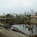 Már eddig is fadöntésektől volt hangos a város: fákat vágtak ki az Olimpia Parkban, a Kossuth terén, a Ferenciek terén - most a Népsziget került sorra. A népszigeti