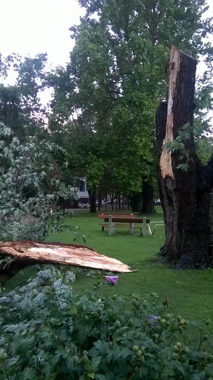 Balatonlellén fákat is ketté tört a vihar.