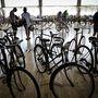 A múlt héten Tiszakécske adott otthont a veterán kerékpárok világtalálkozójának és versenyének