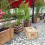 Keresetlen egyszerűség: dizájn növényekkel és menő göngyöleggel