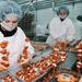 Visszatekintés: 2000. augusztus 17.  A Ringa Húsipari Rt. kapuvári gyárában új késztermék gyártását kezdték meg. Az újonnan létrehozott nyárspecsenye üzemben jelentős kézi munka ráfordítással a fapálcikára a hús mellé különféle zöldségeket tűznek. Az újdonságra nagy a kereslet elsősorban a holland piacra szállítják a sütésre előkészített terméket.