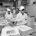 Visszatekintés: A Győr-Sopron Megyei Állatforgalmi és Húsipari Vállalat kapuvári gyáregységében az idén 893 millió forint értékű húsárut dolgoznak fel. Új termékük a szeletelt bacon, amelyből az idén 1500 tonnát exportálnak amerikai piacra.