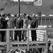 1963, június 26. John Fitzgerald Kennedy amerikai elnök, Willy Brandt, Berlin főpolgármester és Konrad Adenauer kancellár a Checkpoint Charlie-nál. Ekkor vallotta magát JKF ein Berlinernek. Két évvel a fal építése után az amerikai elnök nyíltan szolidaritást vállalt a keleti megszállástól félő nyugat-berliniekkel.