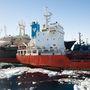 A japán bálnavadászhajó hajtott neki a sokkal kisebb méretű bálnavédők hajójára, derült ki a zöldszervezet által nyilvánosságra hozott felvételekből. Az ütközet az Antarktiszhoz közeli vizeken zajlott. A Sea Sepherd bálnavédő-szervezet egyik hajója beállt a japán bálnavadászok naszádja és az azt üzemanyaggal feltölteni kívánó dél-koreai hajó közé. Kapcsólódó cikkünket a linkre kattintva olvashatják.