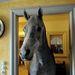 Az állatnak saját szobája is volt a házban, ami tele van szénával, de a ló minden szobában gyakori vendég volt. Az emberi ételeket és az édességeknek is nagy kedvelője lett.