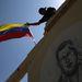 Chávez egyik híve zászlót tűz egy a volt elnök képével díszített falra, a