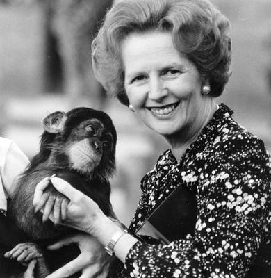A képaláírás szerint David Cameron brit miniszterelnök itt egy elárvult kisbárányt etet cumisüvegből, de ha kitakarják az üveg száját, az egész pont úgy néz ki, mintha Cameron egy libát fojtogatna, miközben egy palack fehérjekivonatot önt az agyába.