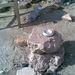 Olykor két egymásra rakott kő is elegendő asztalnak.