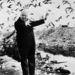 Sirályokkal a háttérben. Madarak című filmjében megvadult rajok támadnak Kaliforniára. Tippi Hedren, a film női főszereplője szerint, Hitchcock veszélyes és gonosz őrült  volt, akinek nehéz ellenállni.