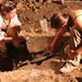 Lókoponyát találtak a pince kifolyónyílásában