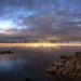 A kaliforniai Mono-tó, az évszázad legjelentősebb tudományos felfedezése az itt talált, arzént tartalmazó DNS-ű baktériumfaj.