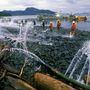 A tengerszorosnál még 21 évvel a katasztrófa után is elég néhány centire lefúrni az alaszkai talajba, hogy előbukkanjon az Exxon Valdez olaja.